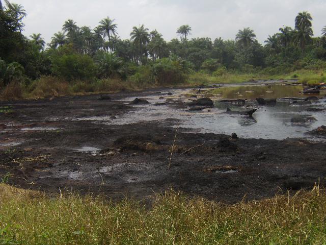 Febbraio 2011 – Perdita da oleodotto Agip ad Emago.