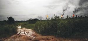 Gas-Flaring-a-Ebocha-1-300x142