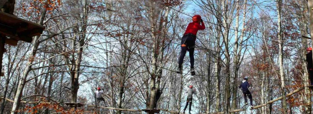 Percorsi acrobatici - Cortesia Orme nel Parco