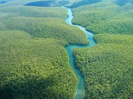 vitoTotire-Amazzonia
